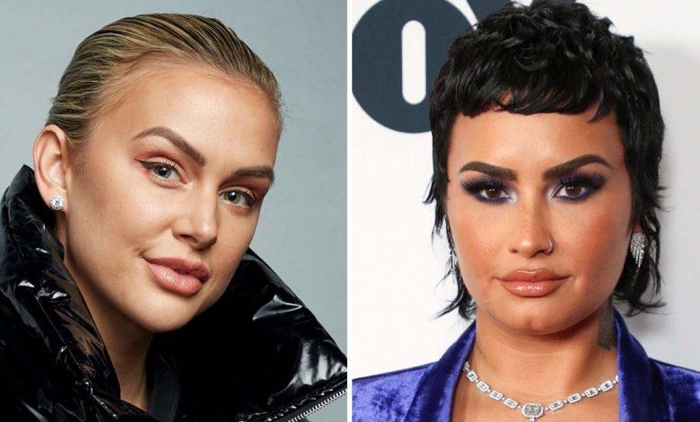 Demi Lovato's 'Sober California' Approach Is 'Offensive'
