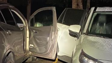 Bear Rummages Through 8 Unlocked Vehicles In Estes Park – CBS Denver