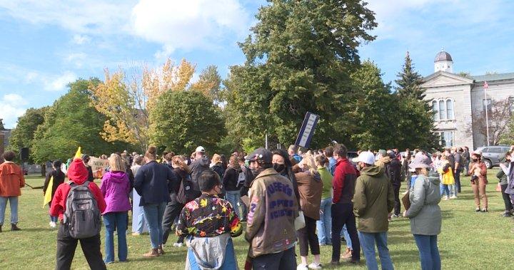 Hundreds of Kingstonians participate in global climate strike - Kingston
