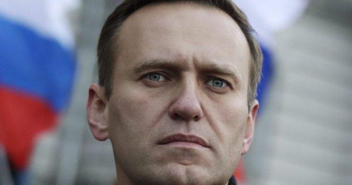 Alexei Navalny: Russia pursuing new criminal case against jailed Putin critic - National