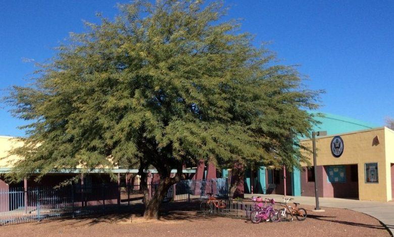 Mesquite Elementary School in Tucson, Arizona.