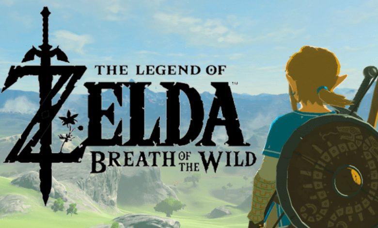 Breath of the Wild Has Hidden Dialogue